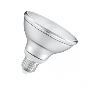 Ampoule Led PAR30 10W (=75W) - Gradable